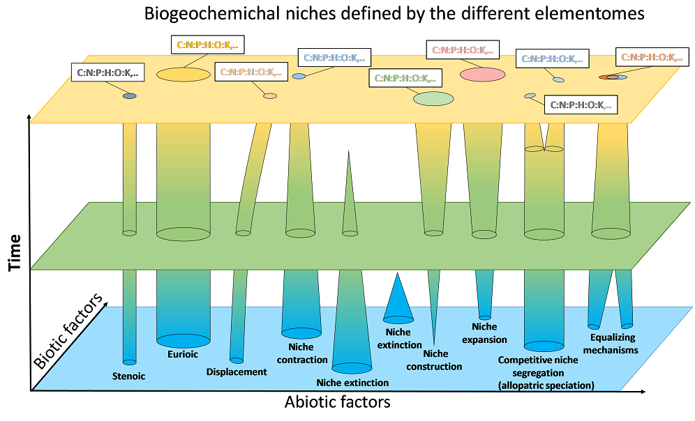 Biogeochemical niches_Elementome_2019_1000x